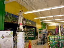 Commercial_Painting_Pet_Supplies_Store_Warsaw_Indiana__2_